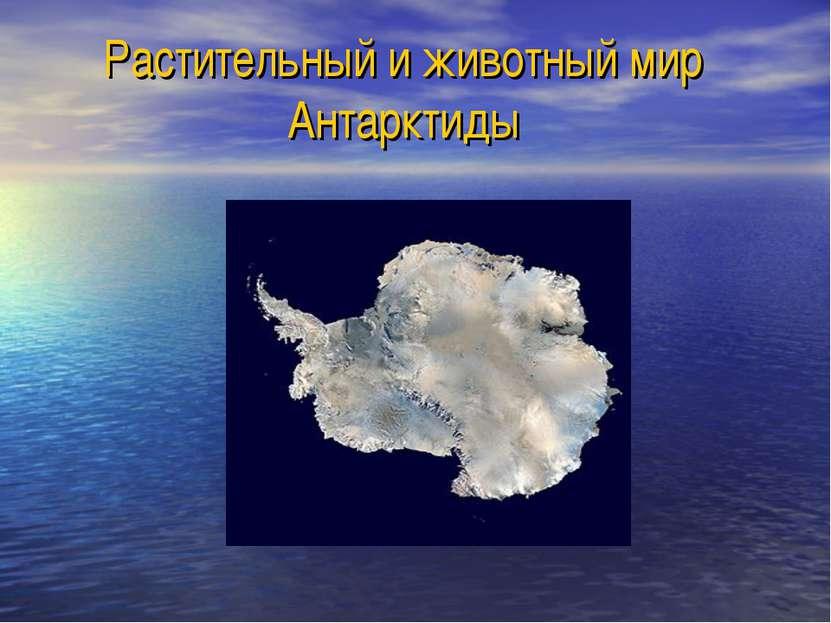 Растительный и животный мир Антарктиды