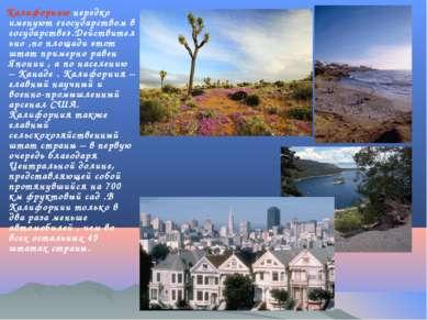 Калифорнию нередко именуют «государством в государстве».Действительно ,по пло...