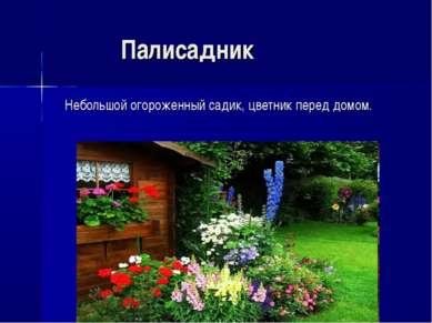 Палисадник Небольшой огороженный садик, цветник перед домом.