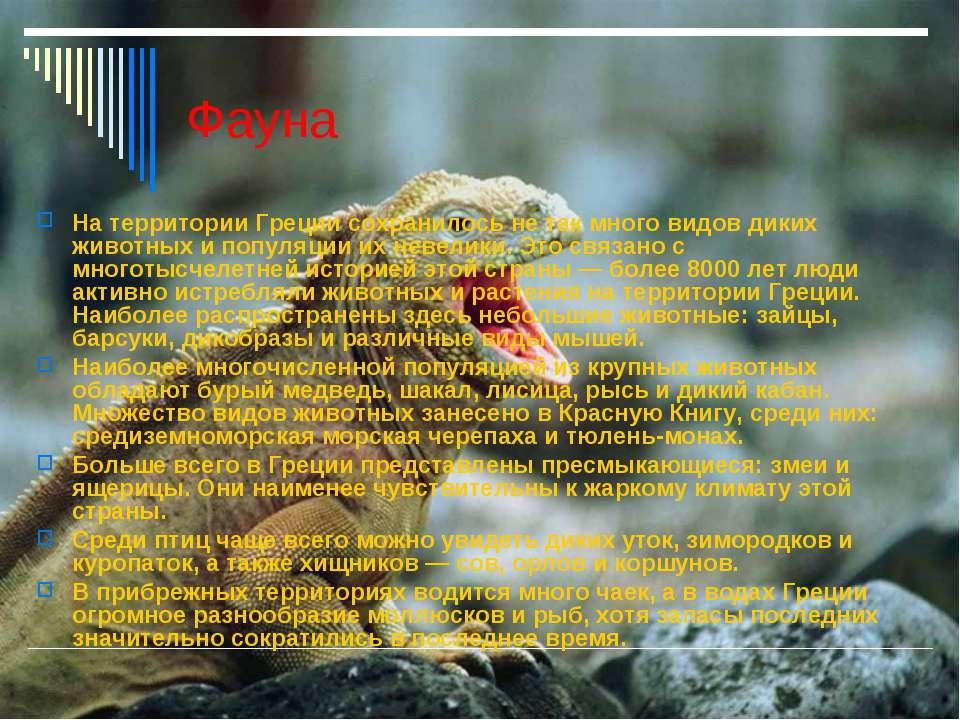 Фауна На территории Греции сохранилось не так много видов диких животных и по...