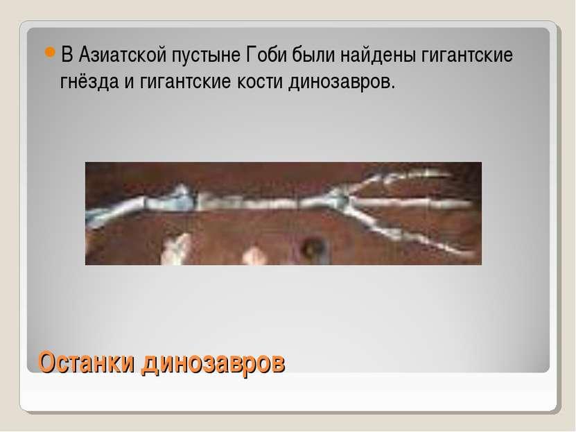 Останки динозавров В Азиатской пустыне Гоби были найдены гигантские гнёзда и ...