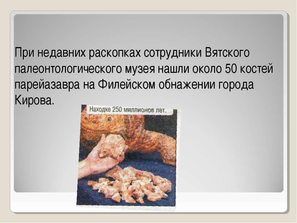 При недавних раскопках сотрудники Вятского палеонтологического музея нашли ок...