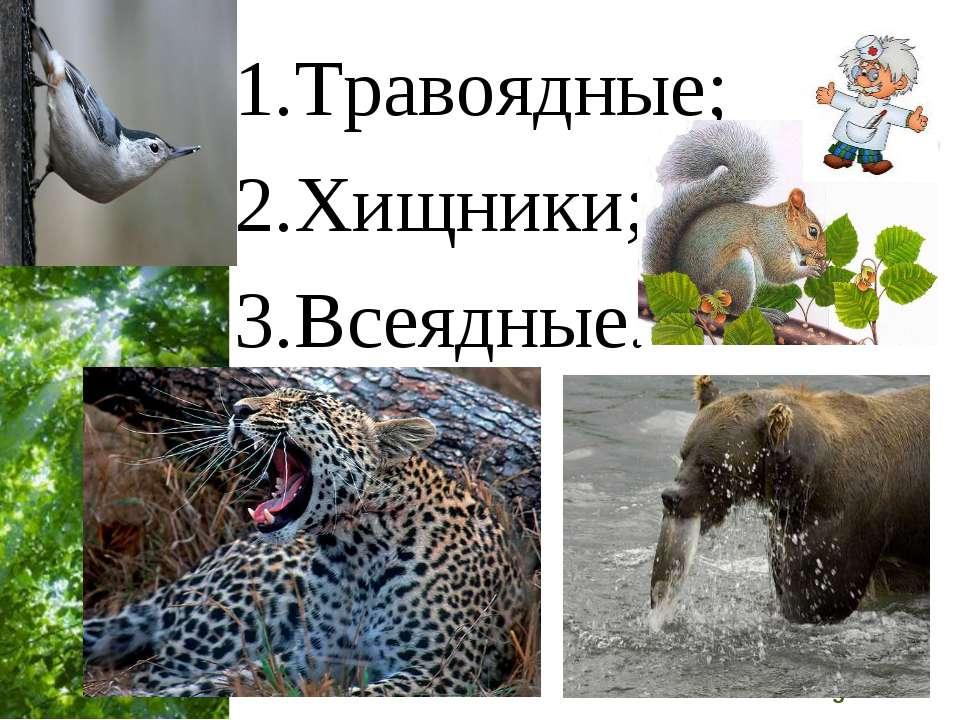 Травоядные; Хищники; Всеядные. Free Powerpoint Templates Page *