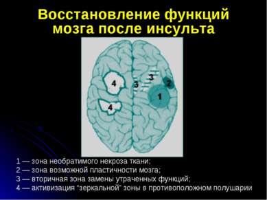 Восстановление функций мозга после инсульта 1— зона необратимого некроза тка...