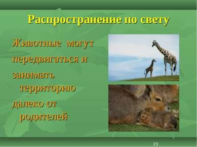 Распространение по свету Животные могут передвигаться и занимать территорию д...