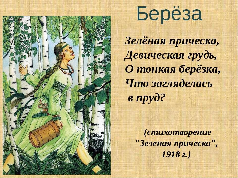 Берёза Зелёная прическа, Девическая грудь, О тонкая берёзка, Что загляделась ...
