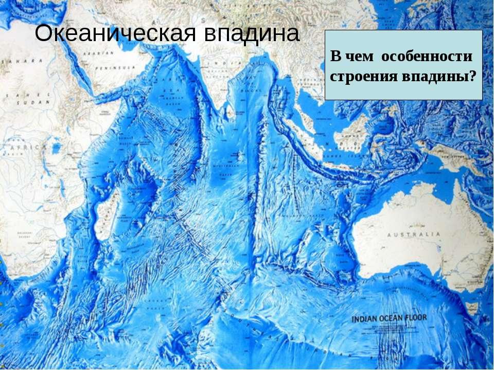 Океаническая впадина В чем особенности строения впадины?