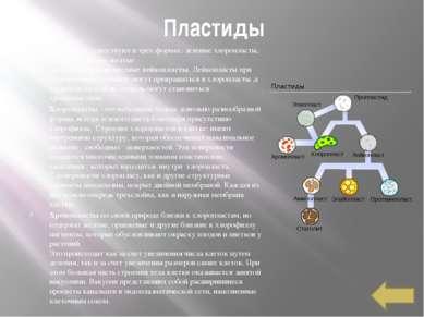 Автор Ученик МБОУ СОШ № 26 г. Пензы Лощинин Михаил Список использованных исто...