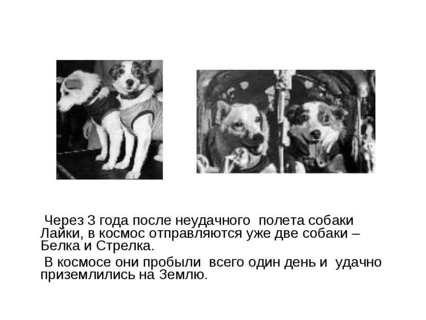 Через 3 года после неудачного полета собаки Лайки, в космос отправляются уже ...