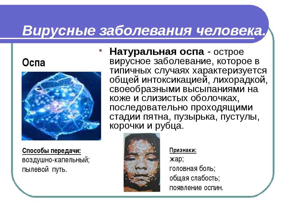 Вирусные заболевания человека. Натуральная оспа - острое вирусное заболевание...