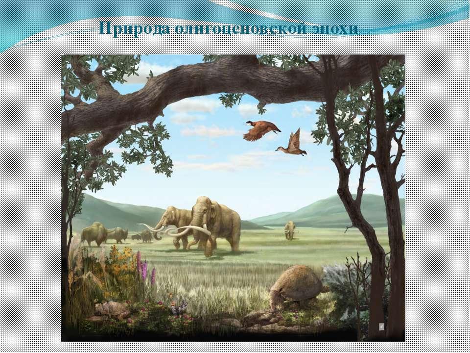 Природа олигоценовской эпохи