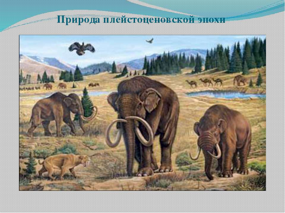 Природа плейстоценовской эпохи