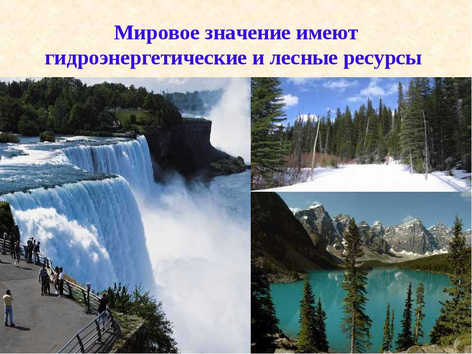 Мировое значение имеют гидроэнергетические и лесные ресурсы
