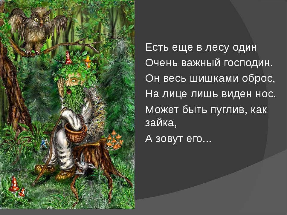 Есть еще в лесу один Очень важный господин. Он весь шишками оброс, На лице ли...