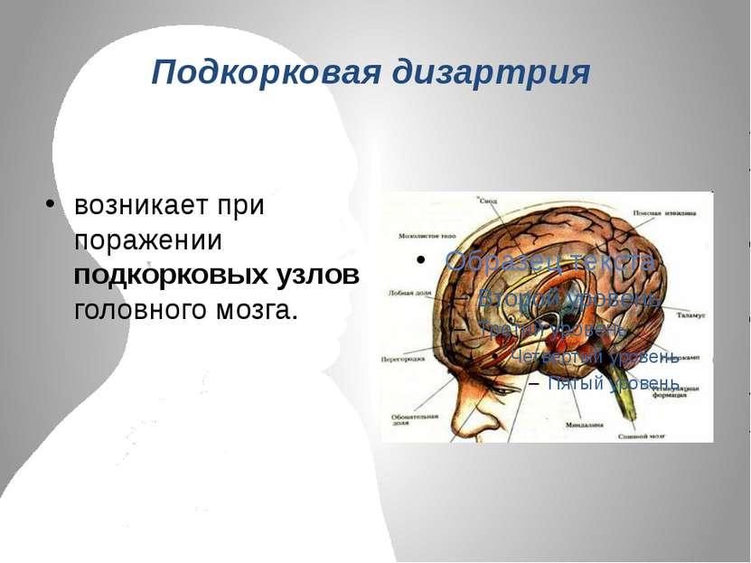 Подкорковая дизартрия возникает при поражении подкорковых узлов головного мозга.