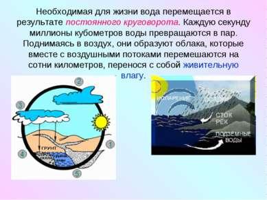 Необходимая для жизни вода перемещается в результате постоянного круговорота....