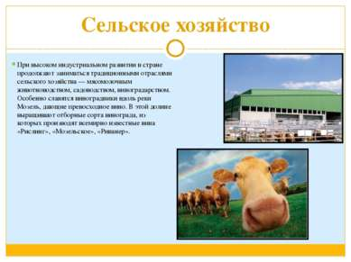 Сельское хозяйство При высоком индустриальном развитии в стране продолжают за...