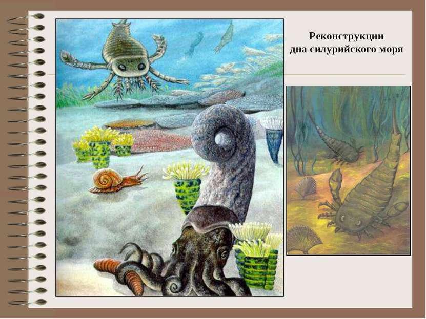 Реконструкции дна силурийского моря