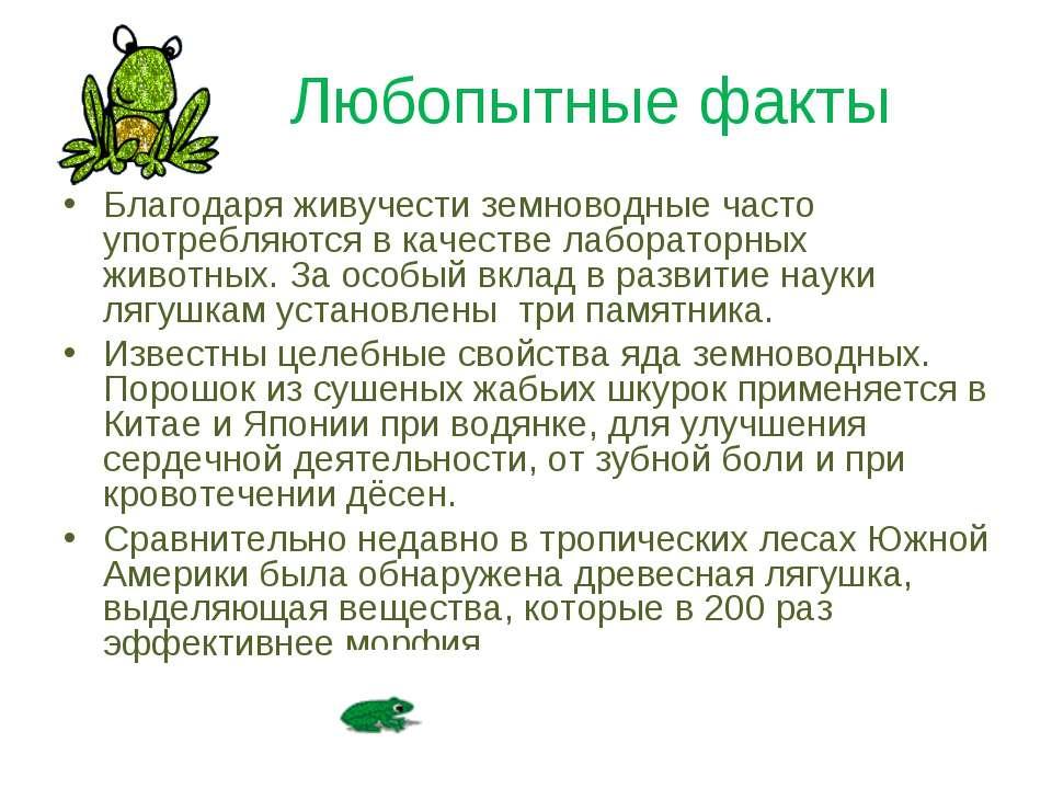 Любопытные факты Благодаря живучести земноводные часто употребляются в качест...