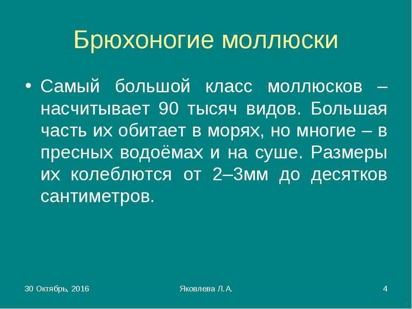 * Яковлева Л.А. * Брюхоногие моллюски Самый большой класс моллюсков – насчиты...