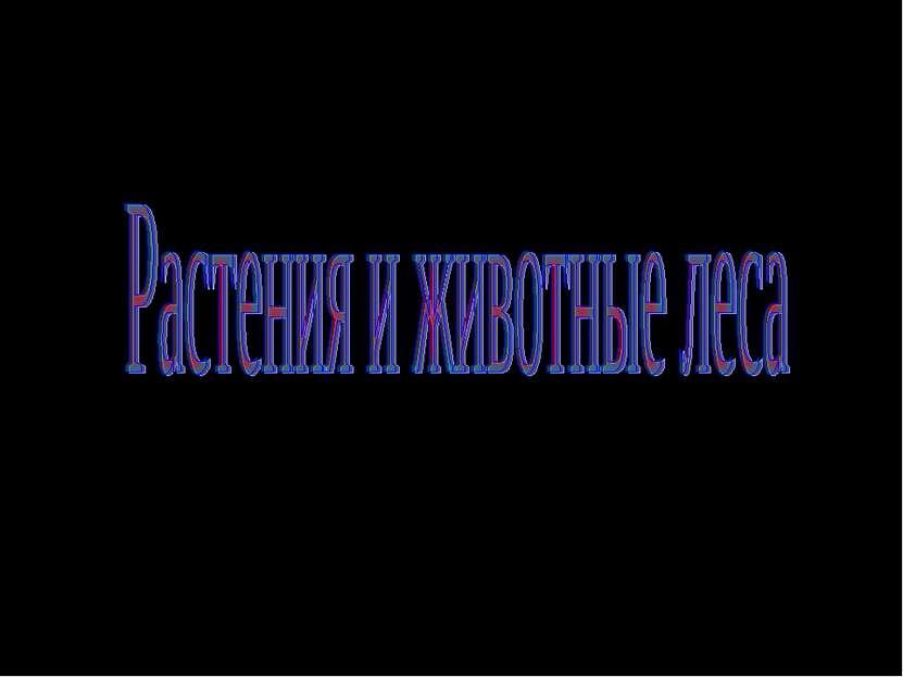 Окружающий мир 4 класс Берестова Татьяна Николаевна Учитель начальных классов...