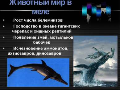 Животный мир в меле Рост числа белемнитов Господство в океане гигантских чере...