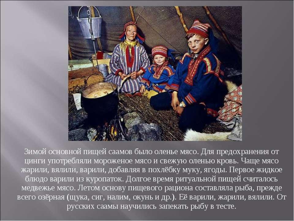 Зимой основной пищей саамов было оленье мясо. Для предохранения от цинги упот...