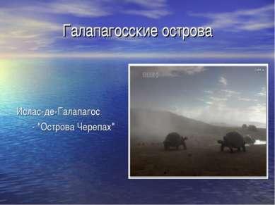 """Галапагосские острова Ислас-де-Галапагос - """"Острова Черепах"""""""