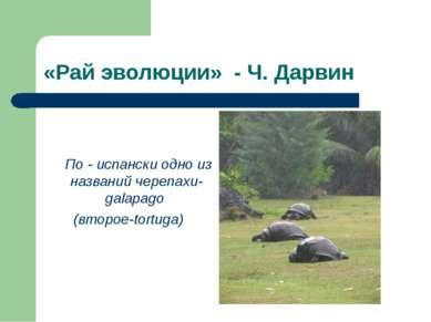«Рай эволюции» - Ч. Дарвин По - испански одно из названий черепахи-galapago (...