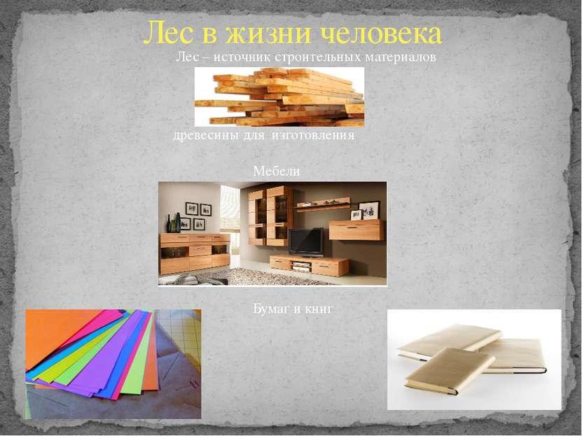 Лес в жизни человека Лес – источник строительных материалов Мебели древесины ...