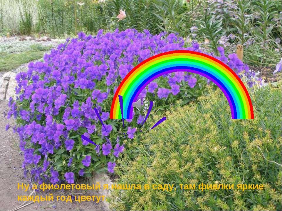 Ну а фиолетовый я нашла в саду, там фиалки яркие каждый год цветут.