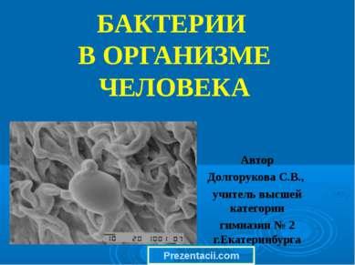 БАКТЕРИИ В ОРГАНИЗМЕ ЧЕЛОВЕКА Автор Долгорукова С.В., учитель высшей категори...