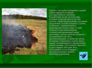 Борьбе с лесными пожарами в нашей стране придается важное государственное зна...