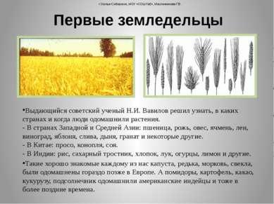 Выдающийся советский ученый Н.И. Вавилов решил узнать, в каких странах и когд...