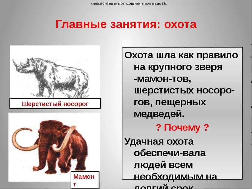 Охота шла как правило на крупного зверя -мамон-тов, шерстистых носоро-гов, пе...