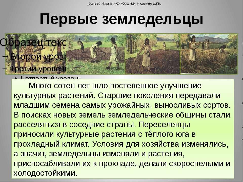 Первые земледельцы г.Усолье-Сибирское, МОУ «СОШ №2», Масленникова Г.В. Много ...