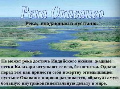 Река, впадающая в пустыню. Не может река достичь Индийского океана: жадные пе...