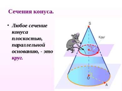 Любое сечение конуса плоскостью, параллельной основанию, - это круг. Сечения ...