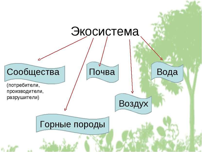 Экосистема Сообщества Почва (потребители, производители, разрушители) Горные ...