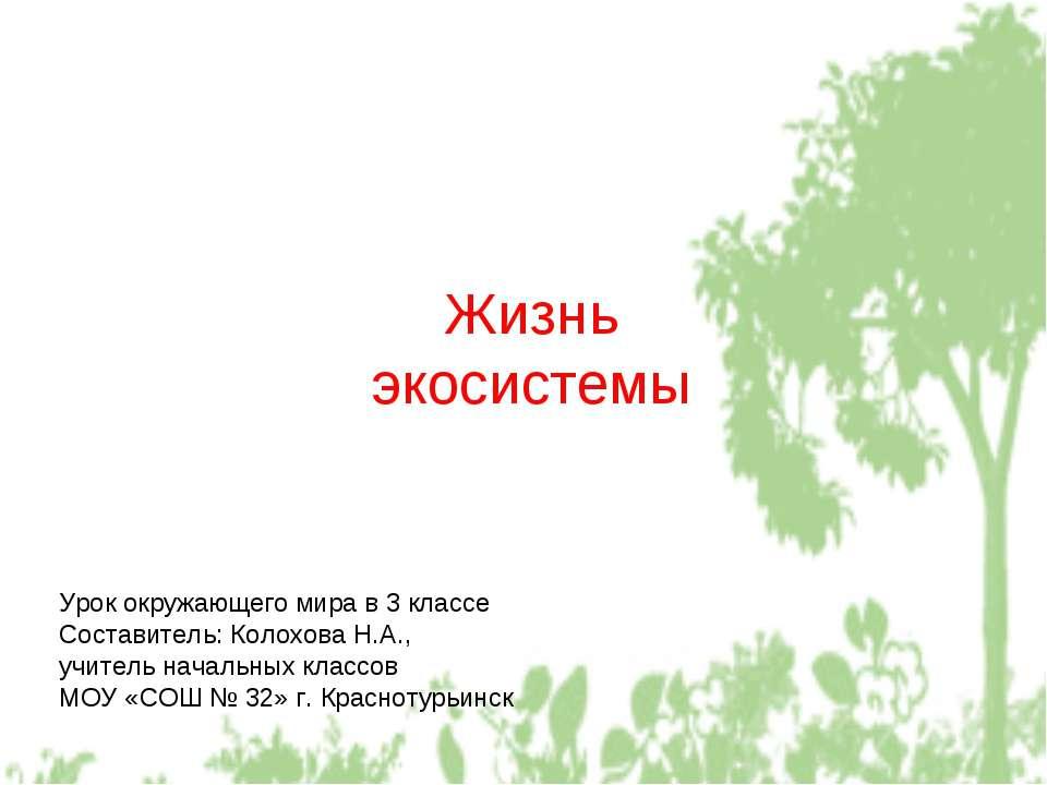 Жизнь экосистемы Урок окружающего мира в 3 классе Составитель: Колохова Н.А.,...