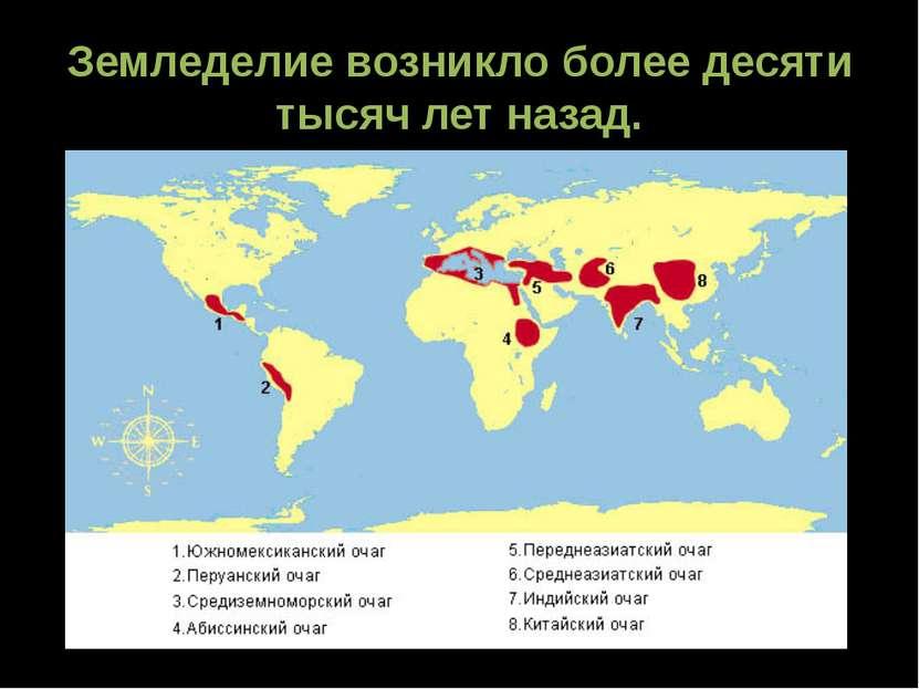 Земледелие возникло более десяти тысяч лет назад.