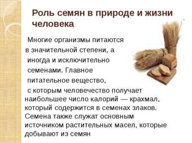 Роль семян в природе и жизни человека Многие организмы питаются в значительно...