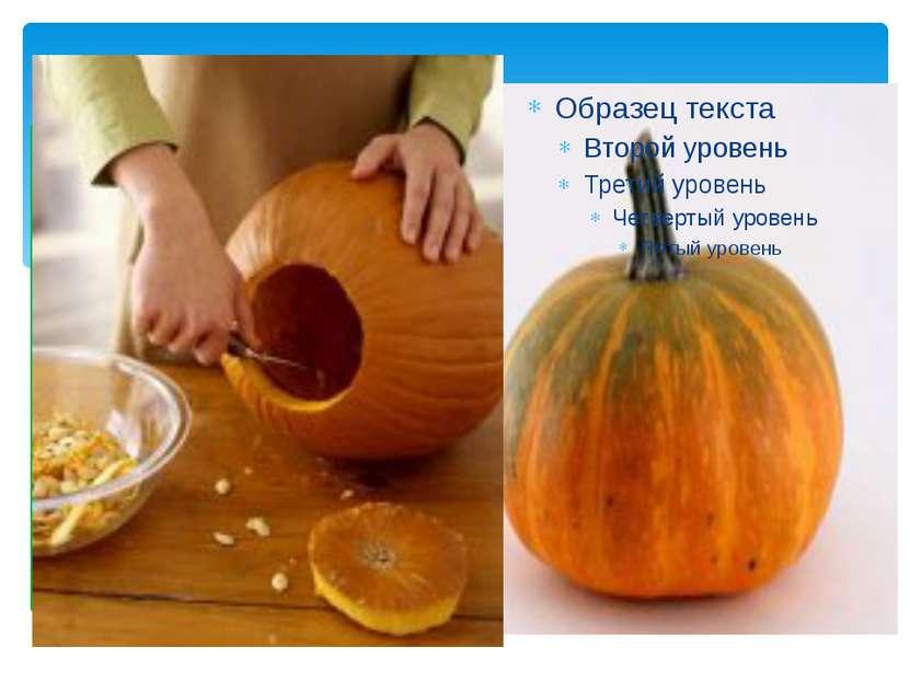 Тыква. Одно из первых растений, которое стал выращивать человек. Плоды тыквы ...