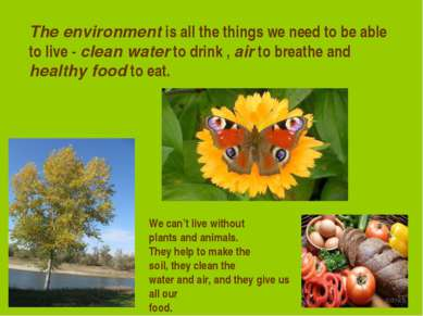 The environment is all the things we need to be able to live - clean water to...