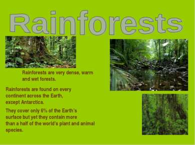 Rainforests are very dense, warm and wet forests. Rainforests are found on ev...