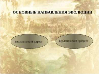 ОСНОВНЫЕ НАПРАВЛЕНИЯ ЭВОЛЮЦИИ Биологический регресс Биологический прогресс