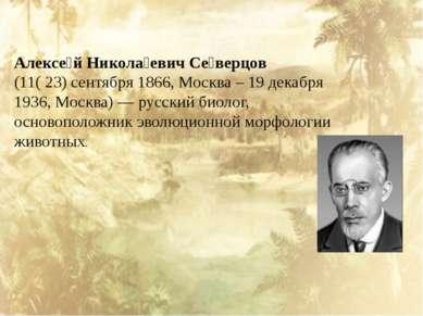 Алексе й Никола евич Се верцов (11( 23) сентября 1866, Москва – 19 декабря 1...