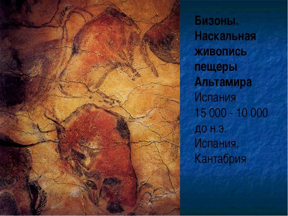 Бизоны. Наскальная живопись пещеры Альтамира Испания 15 000 - 10 000 до н.э. ...