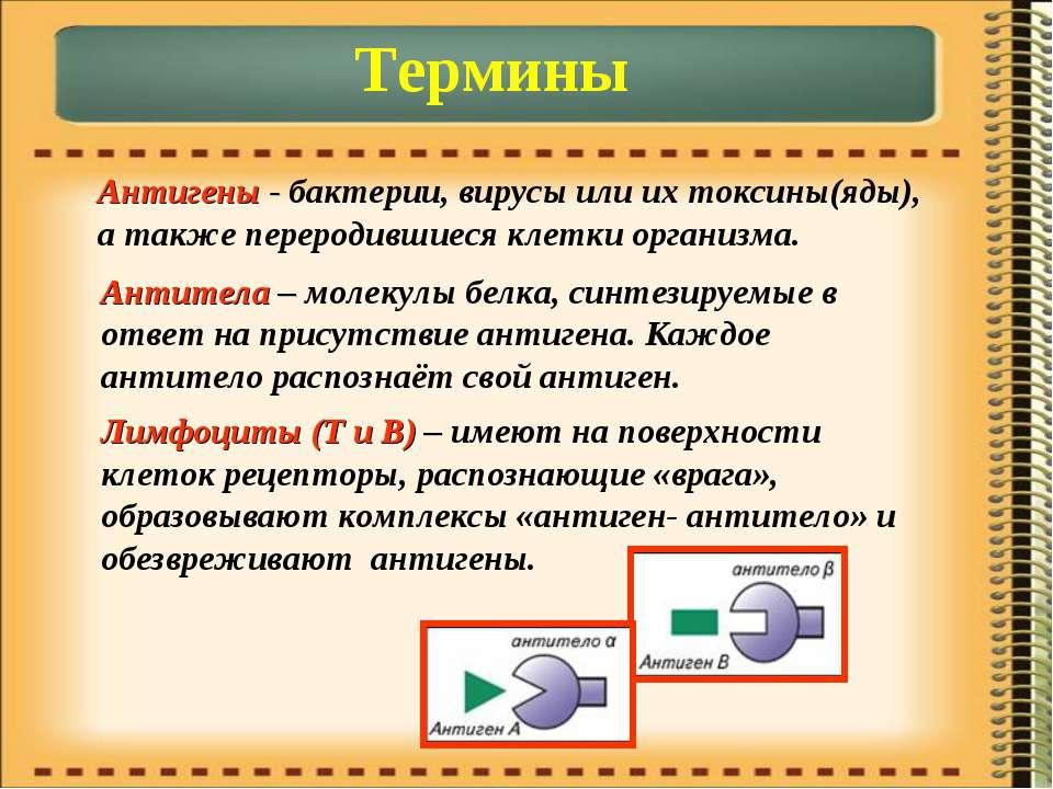 Термины Антигены - бактерии, вирусы или их токсины(яды), а также переродившие...