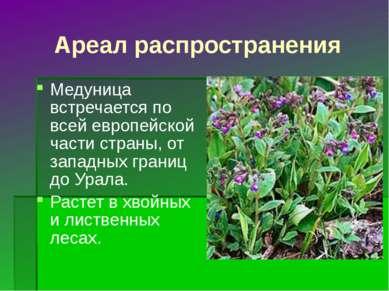 Ареал распространения Медуница встречается по всей европейской части страны, ...